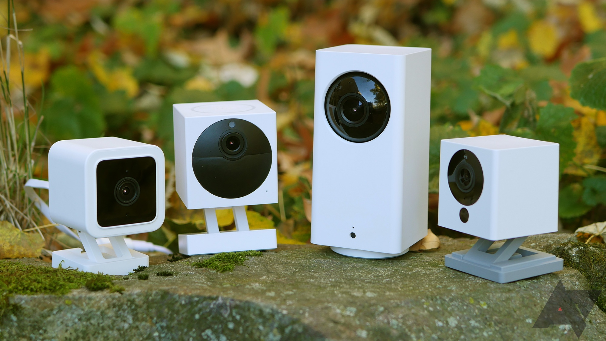 Wyze cam v3: what's new about it?